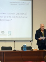 Maurizio Gatti (Sapienza University, Rome, Italy)