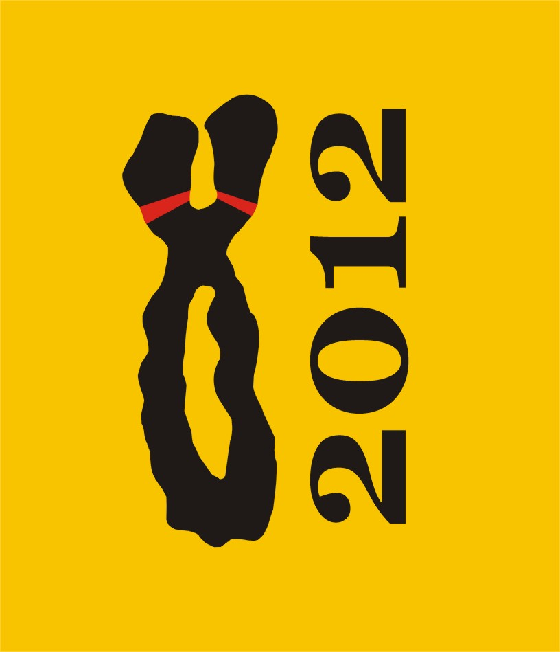 chromosome2012-logo.jpg