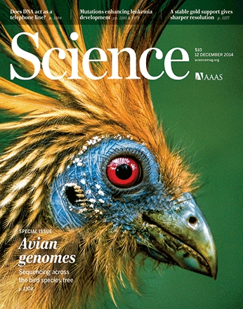 science-cover_page_birds.JPG